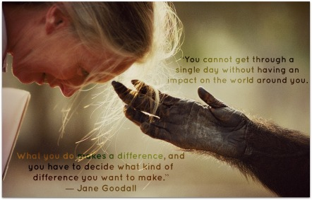 jane-goodall_quotes