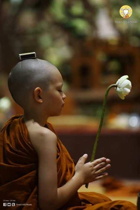 True Little Monk June'18